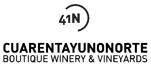 Logo 41 NORTE, S.L.