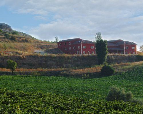 Bodega Señorío de Bocos, en la Ribera del Duero